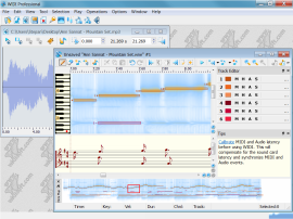 WIDI Professional - mp3 to midi converter